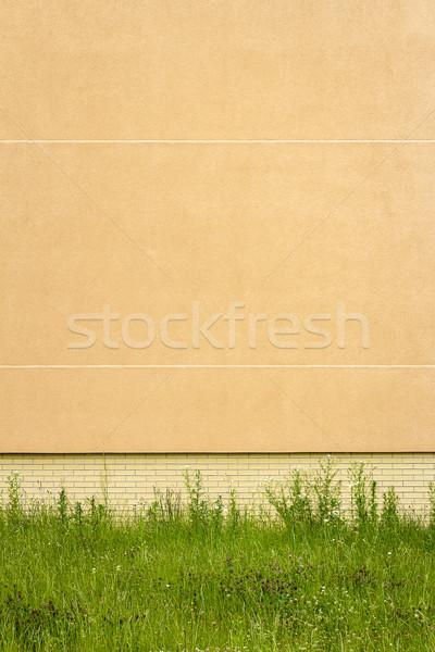 Modernes jaune plâtre mur herbe verte texture Photo stock © Taigi