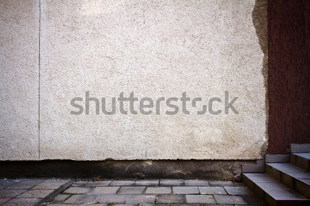Old entrance to soviet times building Stock photo © Taigi
