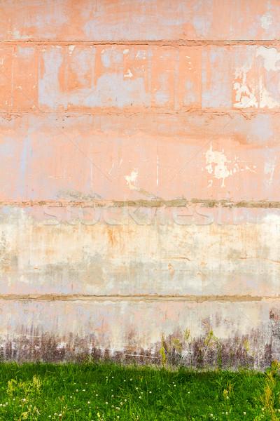 Konkretnych ściany zielona trawa trawy farby graffiti Zdjęcia stock © Taigi