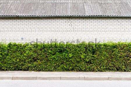Stock photo: Empty brick wall