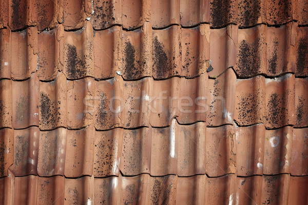 Old roof tiles  Stock photo © Taigi