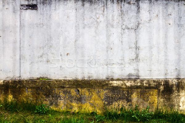 улице стены выветрившийся текстуры трава Сток-фото © Taigi