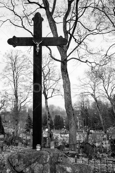 Big cross in the catholic cemetery of Rasos in Vilnius, Lithuania Stock photo © Taigi
