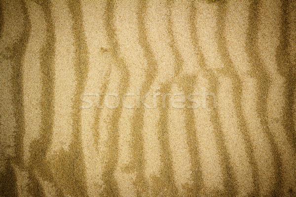 Tengerparti homok textúra közelkép tengerpart absztrakt tenger Stock fotó © Taigi