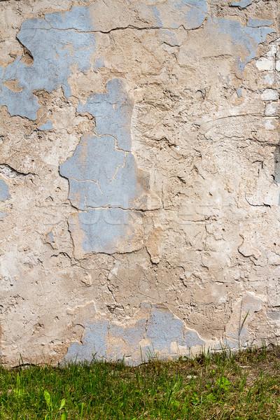 Fehér tapasz fal zöld fű fű kék Stock fotó © Taigi