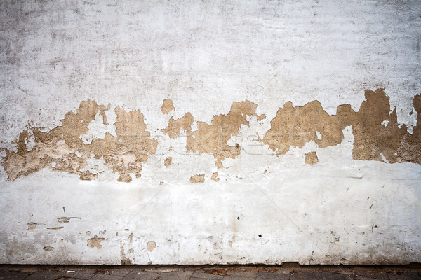Old plastered wall  Stock photo © Taigi