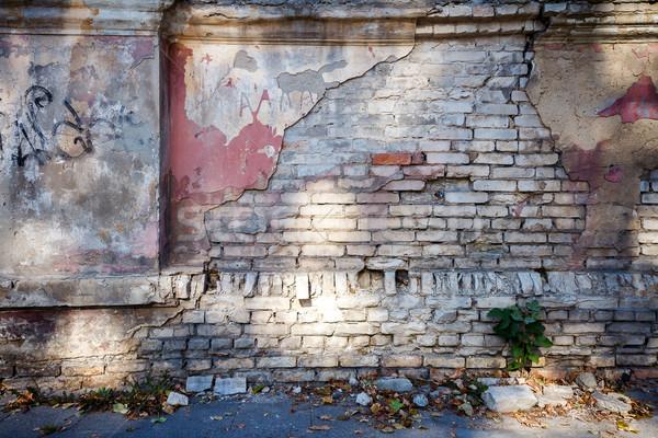 Zdjęcia stock: Starych · pęknięty · ściany · cień · drzewo · budowy