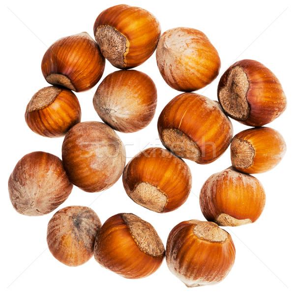 The heap of hazelnuts Stock photo © Taigi