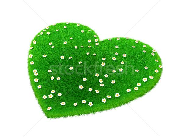 травой поле форма сердце цветок весны трава Сток-фото © taiyaki999