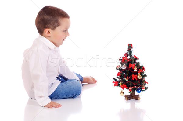 мало Рождества мальчика Cute рождественская елка счастливым Сток-фото © Talanis