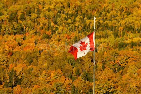 Photo stock: Automne · drapeau · canadien · paysage · feuille · tissu · rouge