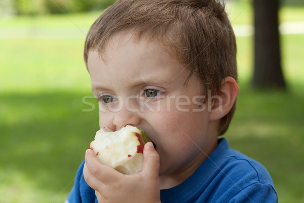 少年 食べ リンゴ かむ 顔 ストックフォト © Talanis