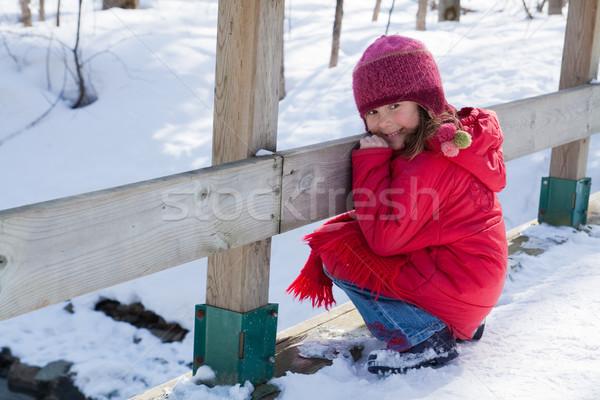 мало зима девушки Cute девочку Сток-фото © Talanis