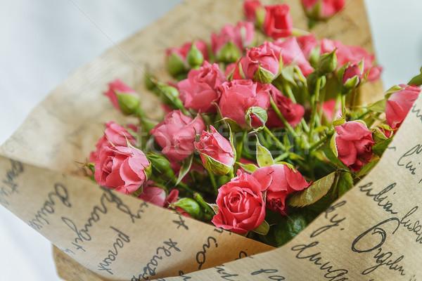 Veel weinig roze rozen achtergrond schoonheid Stockfoto © TanaCh