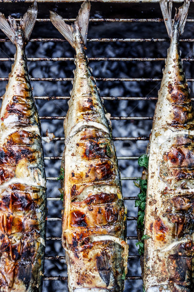 Roasted carcass fish mackerel cooked on the grill, top view, clo Stock photo © TanaCh