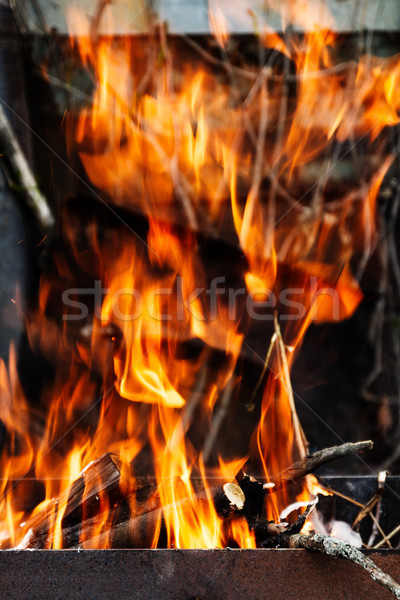 the hearth burn firewood and branches for coal Stock photo © TanaCh
