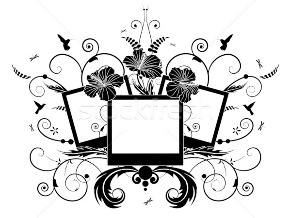 Stock photo: frames with hibiscus