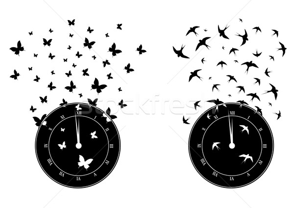 time and freedom Stock photo © tanais