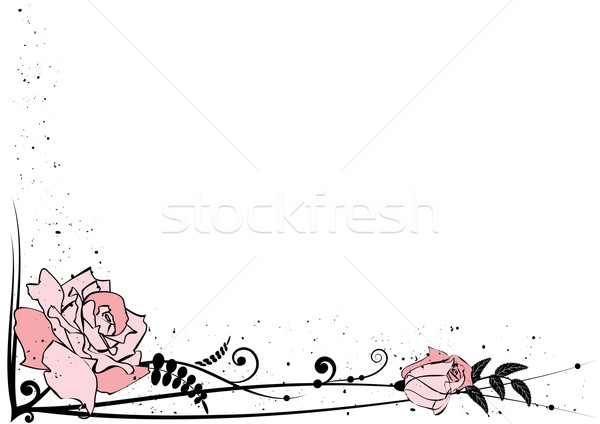 rose border Stock photo © tanais