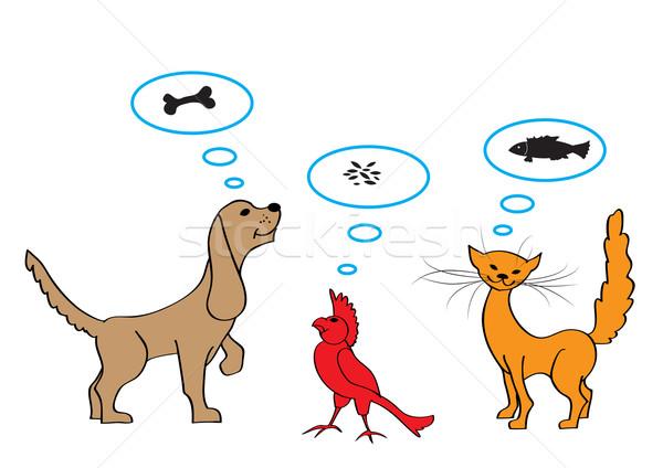Díszállatok szett rajz illusztrációk kutya macska Stock fotó © tanais