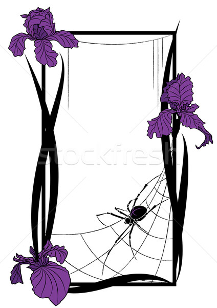vector frame with spider and irises Stock photo © tanais