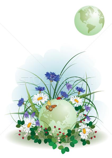Stock fotó: Katicabogár · pillangó · földgömb · terv · háttér · nyár
