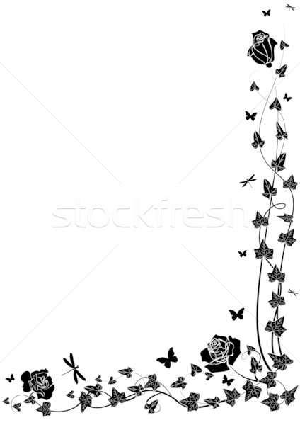 Stock photo: roses and ivy