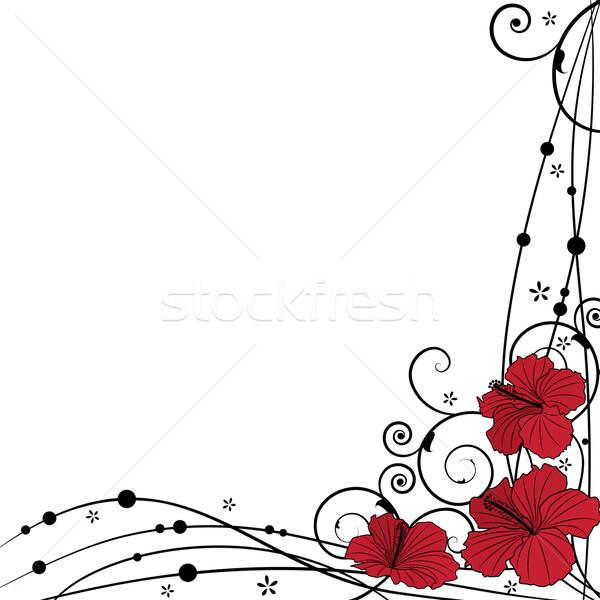 Stok fotoğraf: Ebegümeci · vektör · siyah · kırmızı · renkler