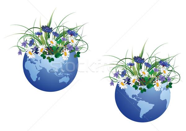 世界中 花 セット 花 地図 抽象的な ストックフォト © tanais