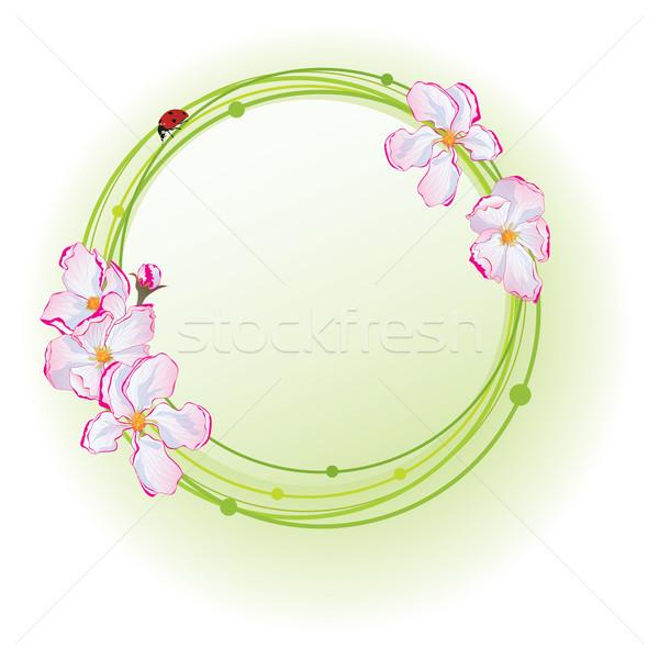 Alma virágok katicabogár vektor keret eps Stock fotó © tanais
