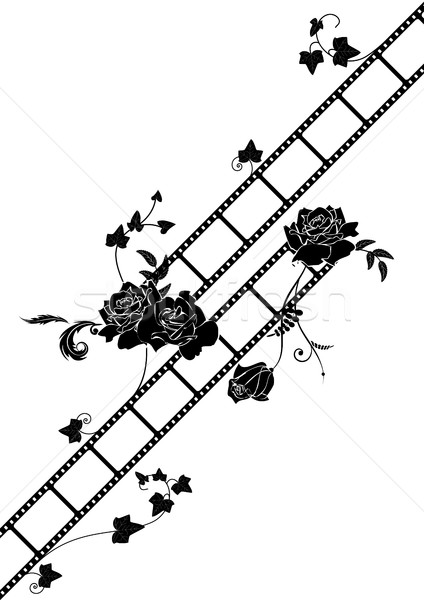 roses and film strip background Stock photo © tanais