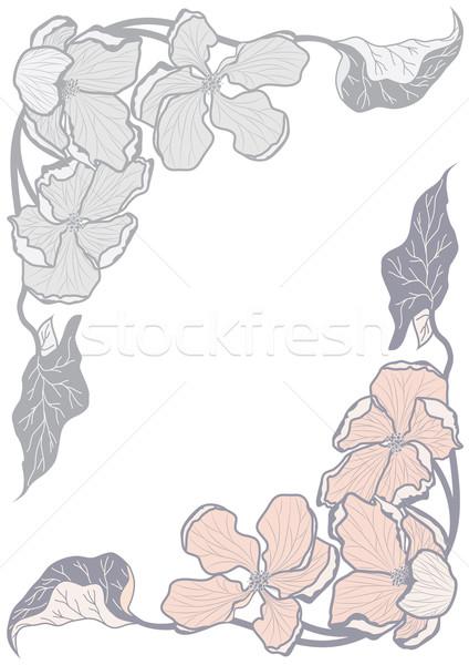 set floral pattern Stock photo © tanais