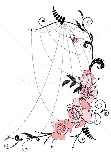 roses and spiderweb Stock photo © tanais