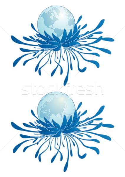 Ziemi chryzantema streszczenie kwiat Pokaż podpisania Zdjęcia stock © tanais