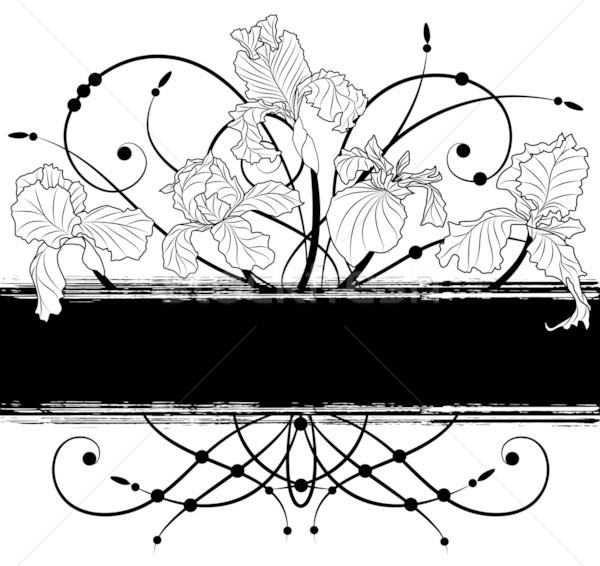 Afiş vektör siyah beyaz renkler siyah Stok fotoğraf © tanais
