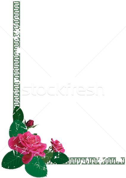 バラ フレーム ベクトル 花 コーナー デザイン ストックフォト © tanais
