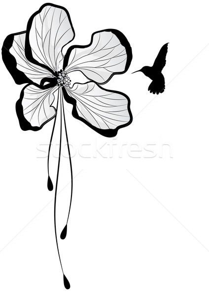 яблоко цветок hummingbird вектора цветочный яблони Сток-фото © tanais