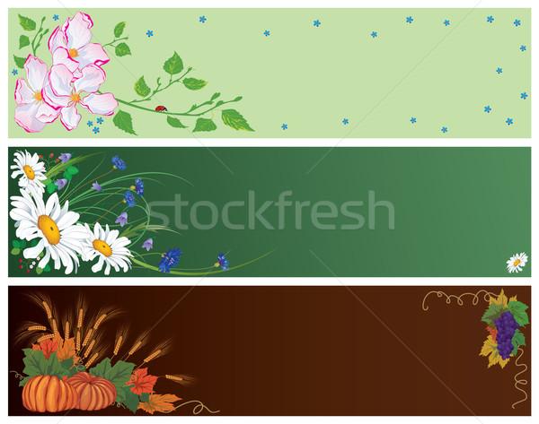 Tavasz nyár ősz szett vektor bannerek Stock fotó © tanais