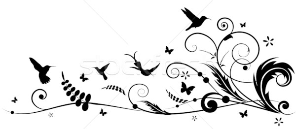 Hummingbird вектора цветок аннотация птица Сток-фото © tanais
