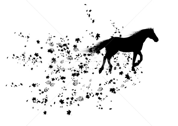 autumnal horse Stock photo © tanais