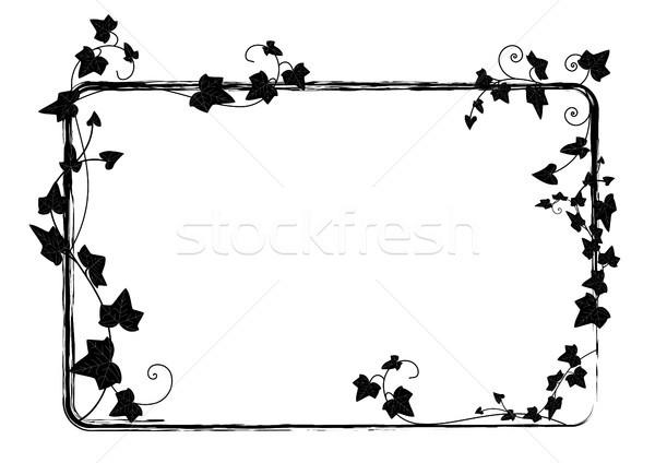 Ivy frame vettore rettangolo ramo foglia Foto d'archivio © tanais