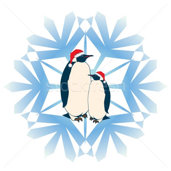 penguins Stock photo © tanais