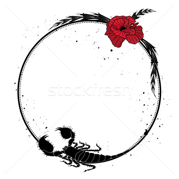 red poppy  and scorpion Stock photo © tanais