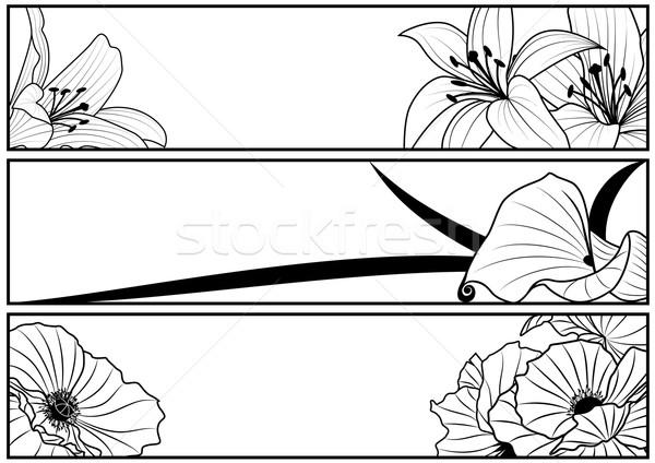 Szett virágmintás bannerek vektor liliom pipacs Stock fotó © tanais