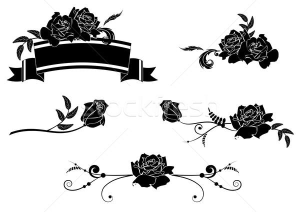 Szett rózsák terv vektor elemek rózsa Stock fotó © tanais