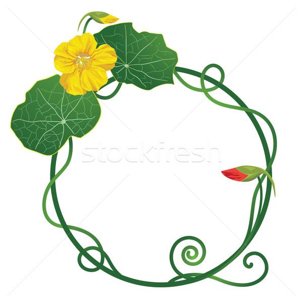 Art noveau floral quadro fundo verde folhas Foto stock © tanais