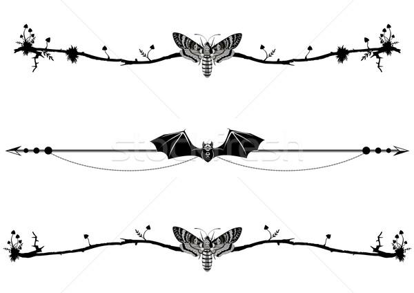 Szett mágikus denevér pillangó halál fej Stock fotó © tanais