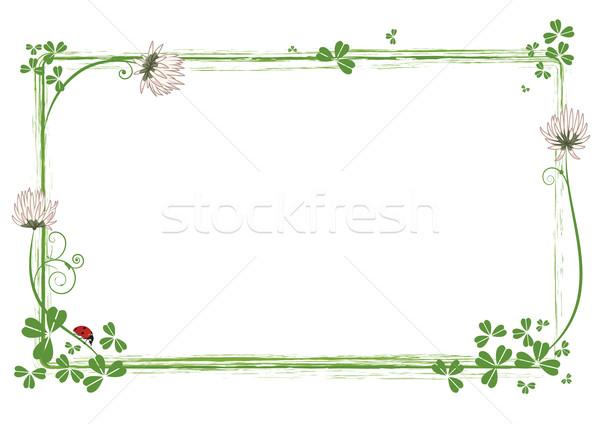 Keret virágok lóhere katicabogár vektor virág Stock fotó © tanais