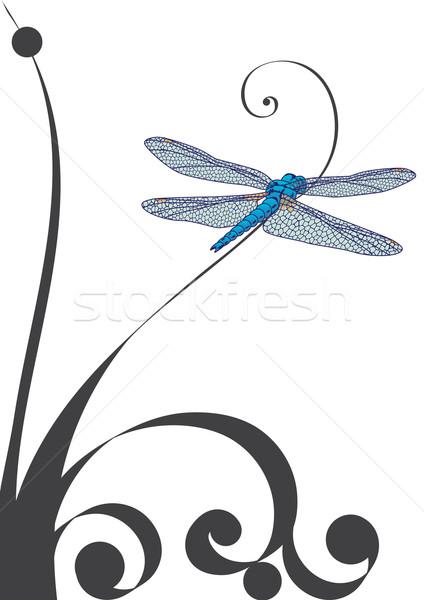 Libel illustratie abstract kunst Blauw plant Stockfoto © tanais