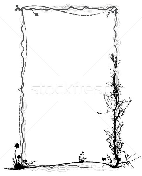 frame with mushrooms Stock photo © tanais